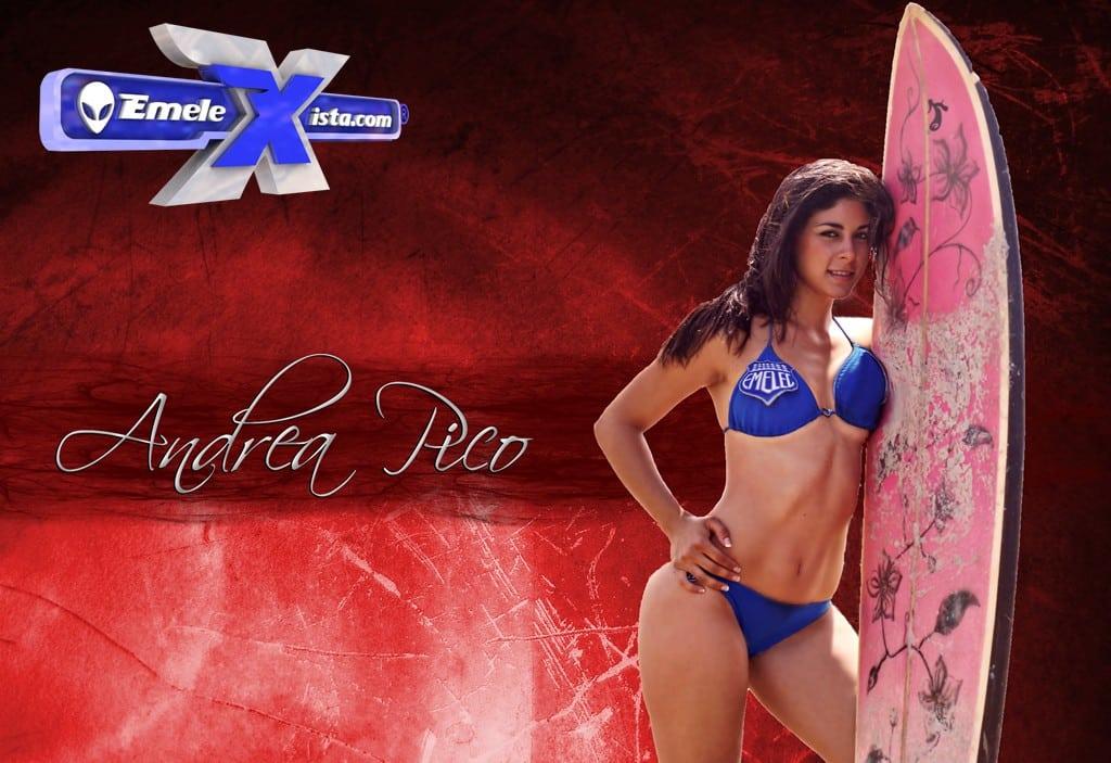 andrea pico surfboard