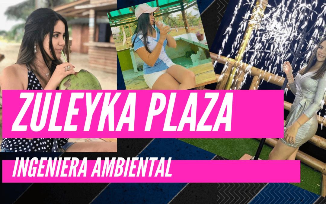 zuleyka plaza ing ambiental